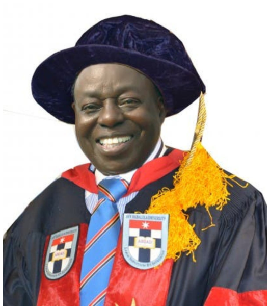 1999 constitution makes politics lucrative - Afe Babalola
